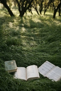 books in nature